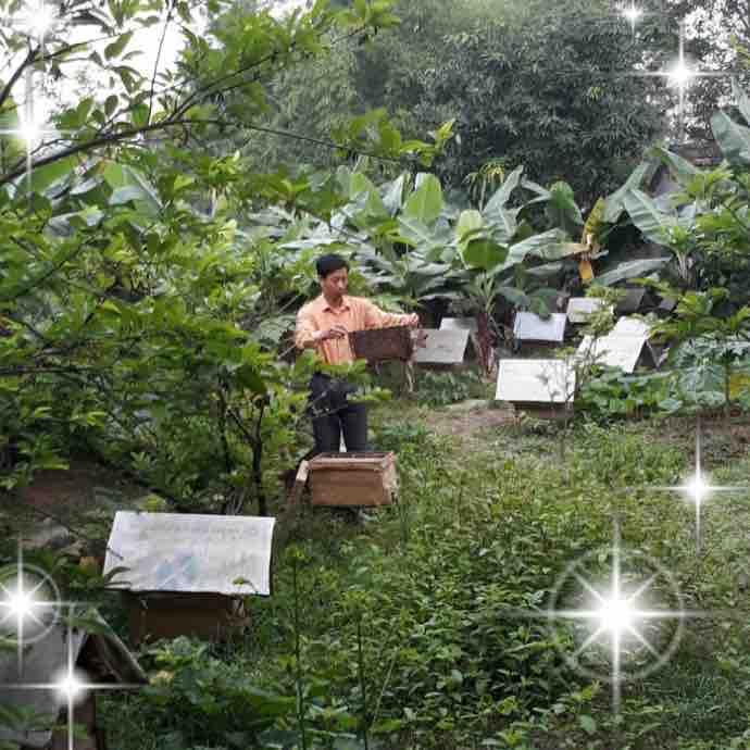 Nguyễn Đình Hựu
