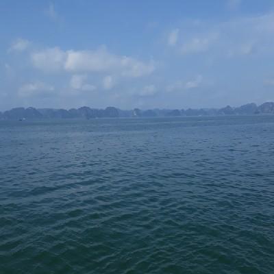 Bui Phong