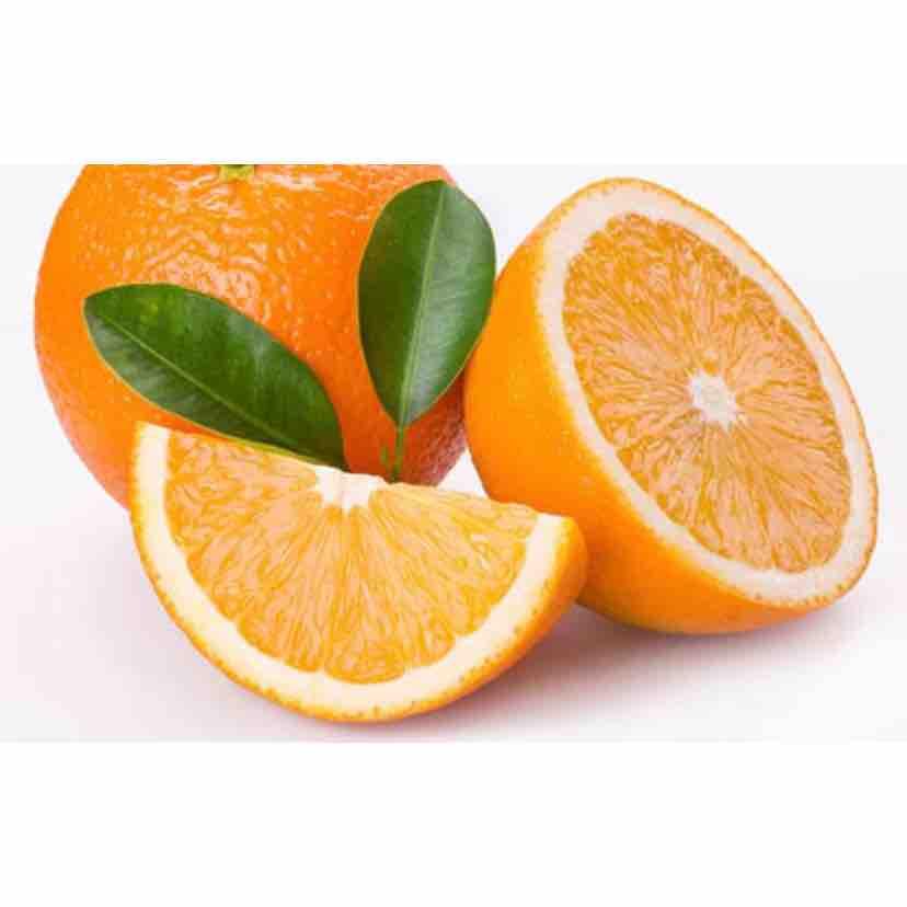 Nhi Hồ