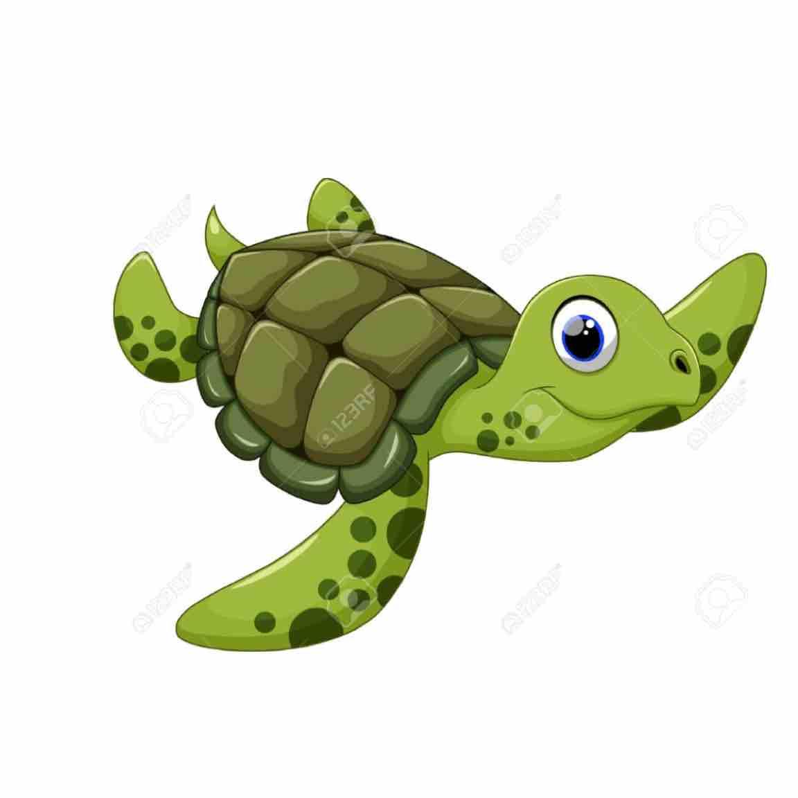 Anh Rùa