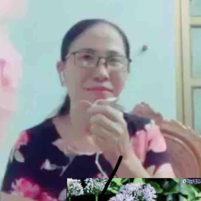 Nguyễn Bảy
